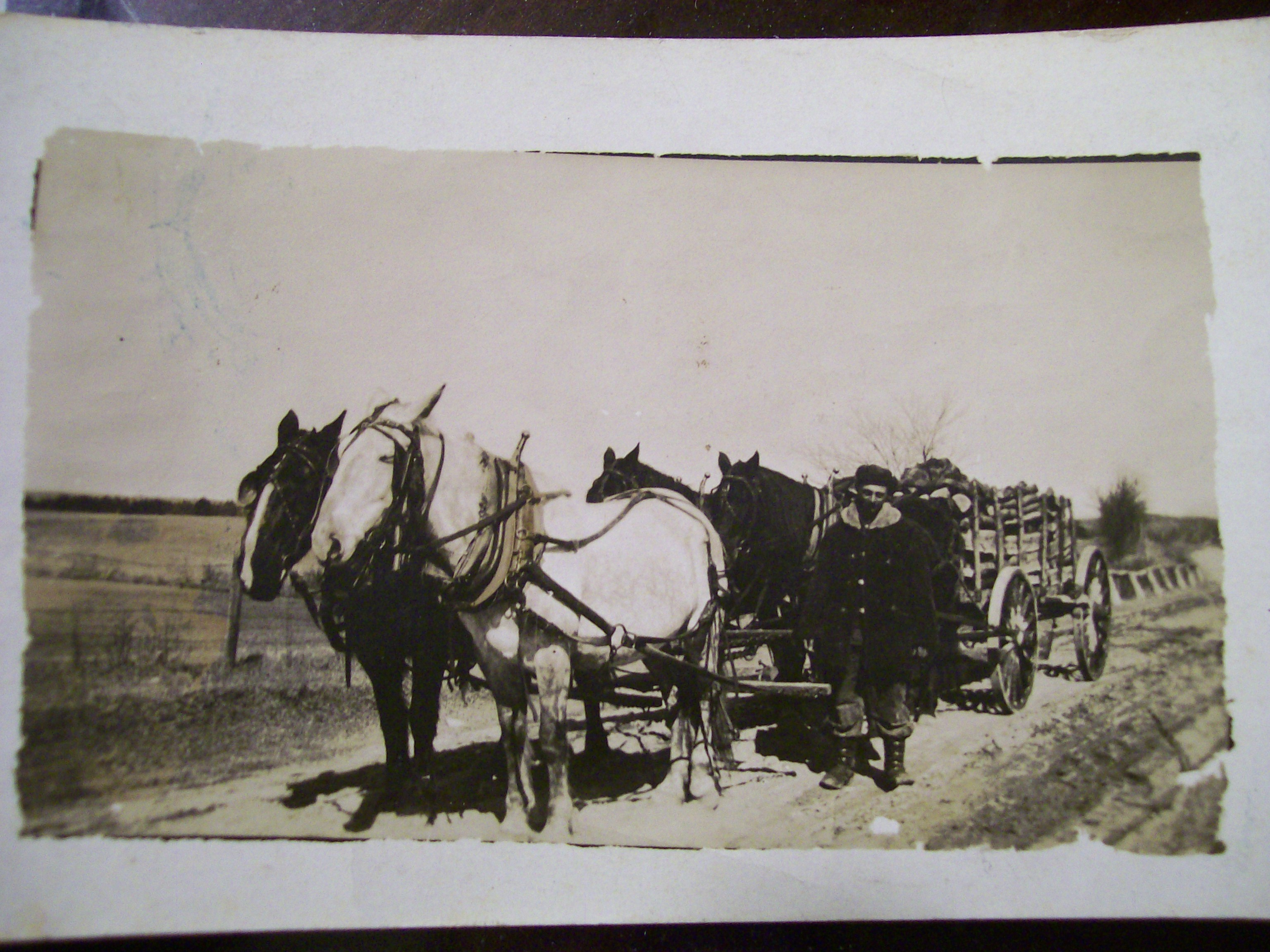 Willis Joslin with horses and wagon load of wood, East Thompson CT