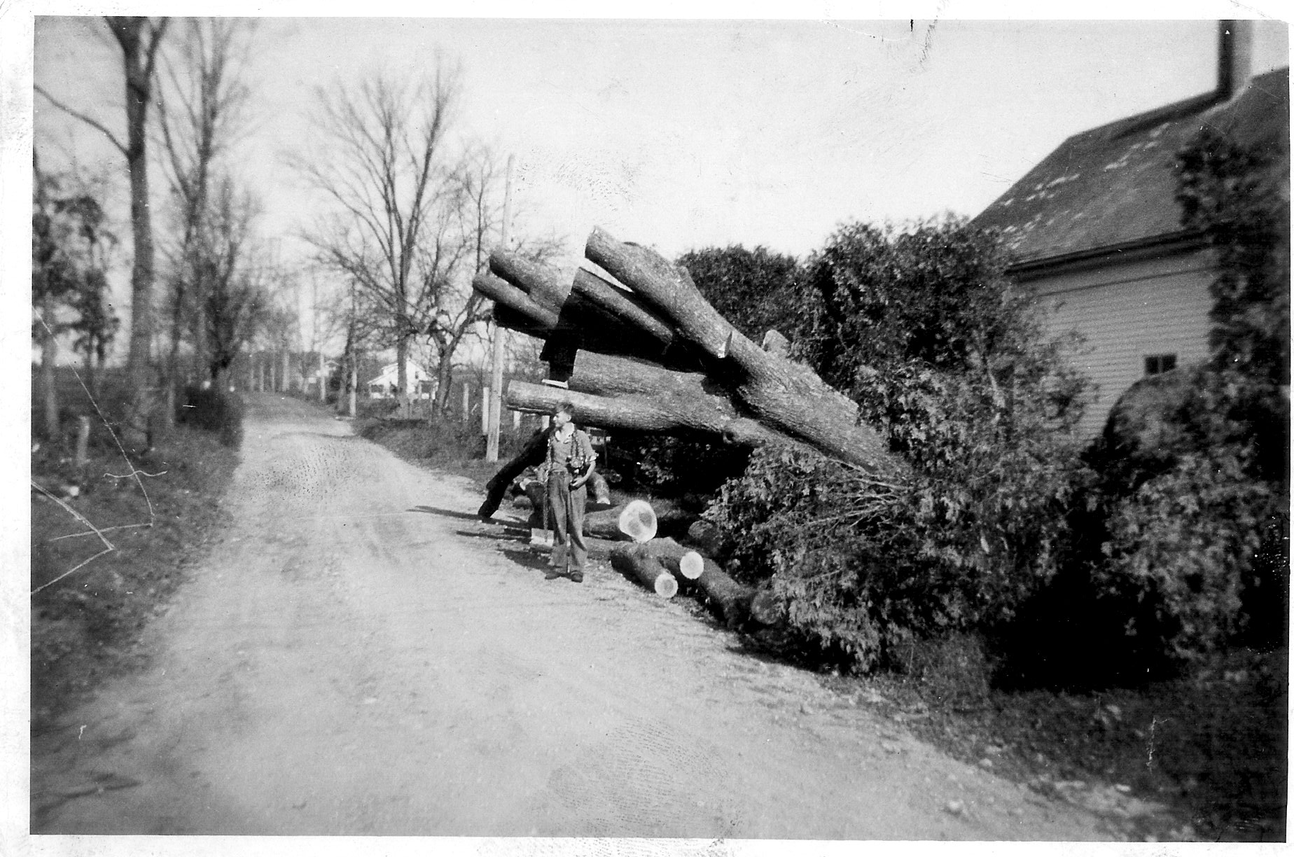 Earl Mead farm off Rt 197 Quinebaug CT 1938 Hurricane, psbly Earl Meade Jr